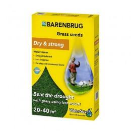 Газонная трава Barenbrug dry and strong (засухоустойчивая) 1 кг